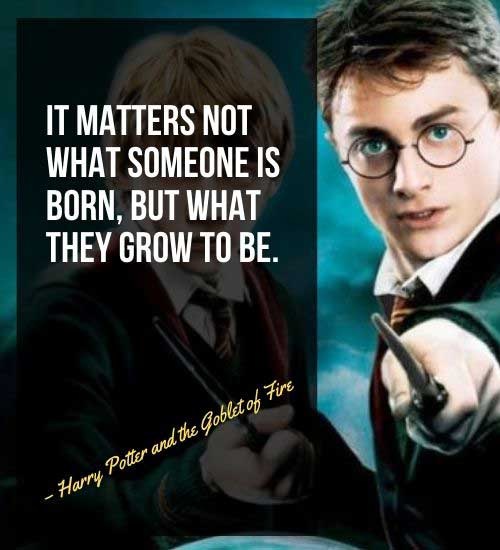 Harry Potter Quotes 13