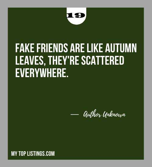 Quotes About Fake Friends 19