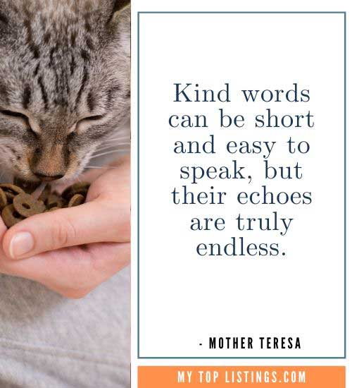 Mother Teresa Quotes be kind anyway